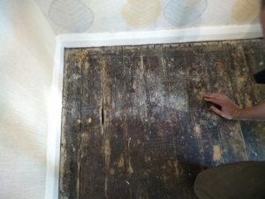 Restoring Pine Floors Bedworth